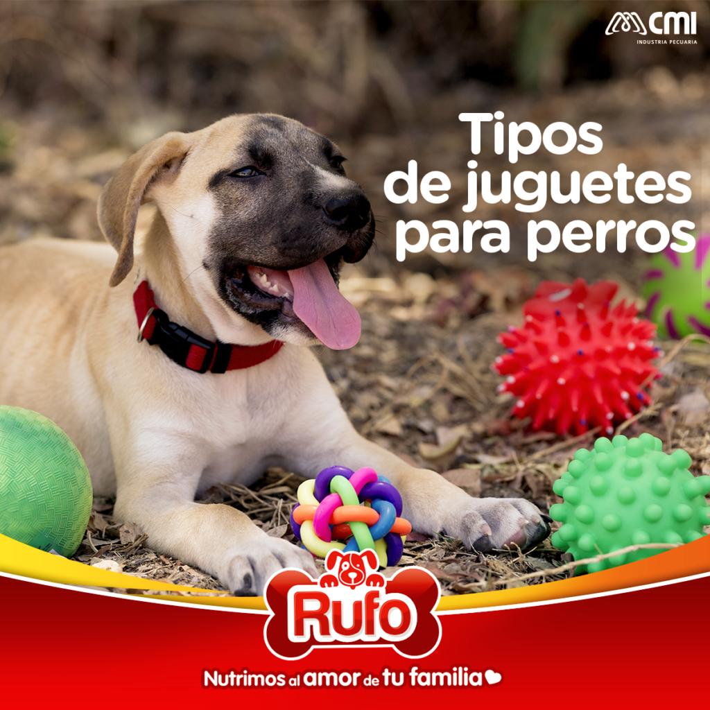 tipos de juguetas para perros