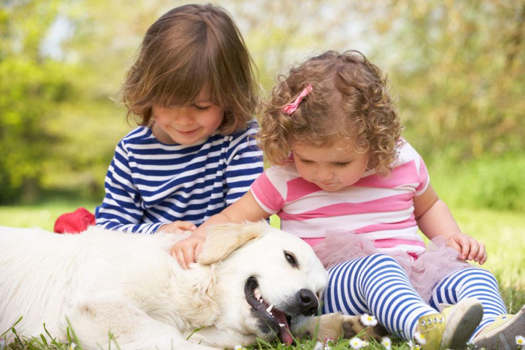 Enséñale a tu hijo a comportarse con un perro.